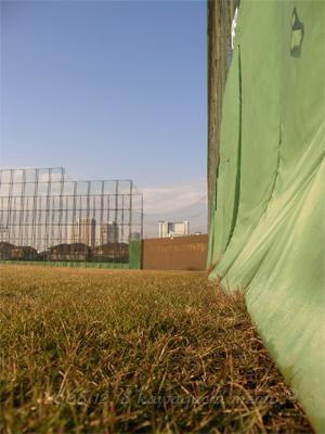 20081224_hirama04.jpg