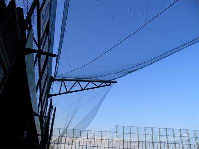 20081224_hirama07.jpg